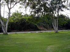 Terreno en venta en Club de Golf La Ceiba